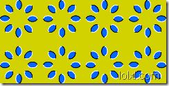 optique02